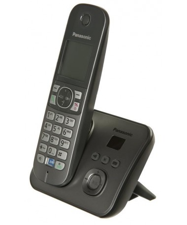 Telefon fiks wireless Phone Panasonic KX-TG 6821PDM (e hirtë)