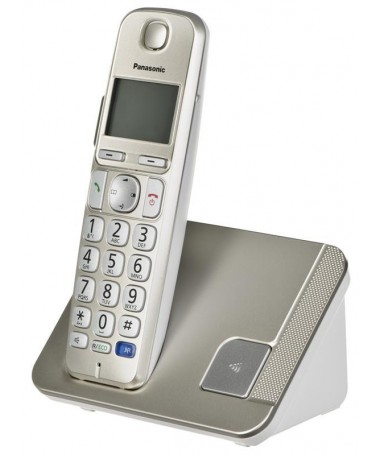 Telefon fiks wireless Panasonic KX-TGE 210 PDN
